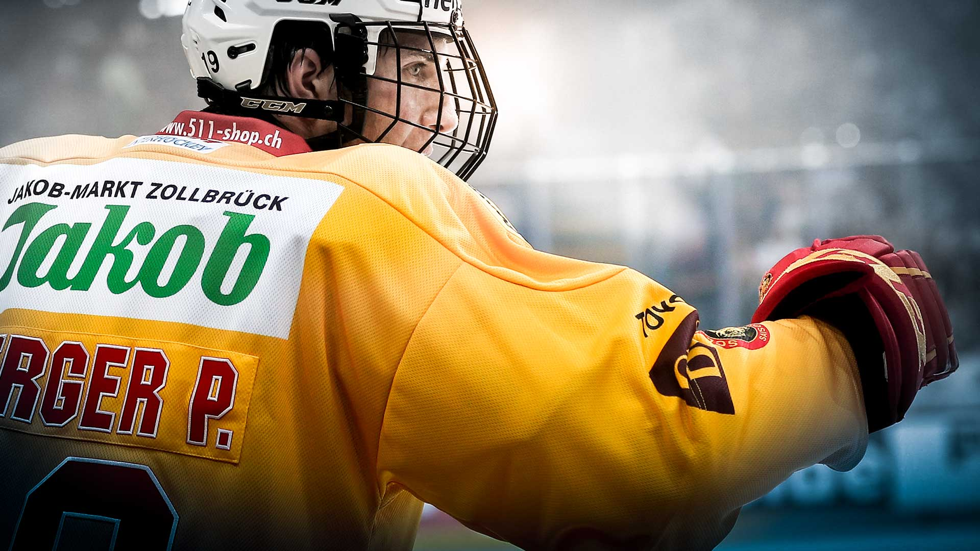 scl tigers home